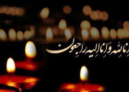 حجت الاسلام و المسلمین شمس، درگذشت پدر حجت الاسلام سید محمد حسینی را به ایشان تسلیت گفت.